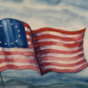 301A - Flag of the 13 Colonies