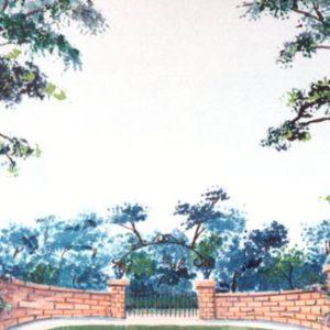 43 - Garden Drop