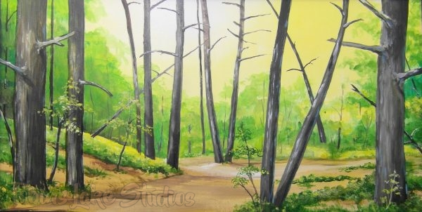 449 - Woods With Path