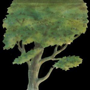 94 - Tree Tabs - Single Trees